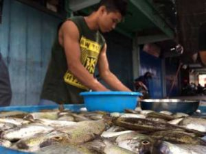 Ikan Dingkis khas Imlek di jual pedagang di Jalan Merdeka Tanjungpinang.