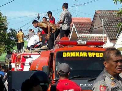 Petugas Pemadam Kebakaran saat berusaha menjinakan api yang melalap rumah Nursiah di Jalan Haji Ungar Kota Tanjungpinang, Kamis (23/2).