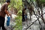 Hutan Lindung Sungai Pulai Terbakar
