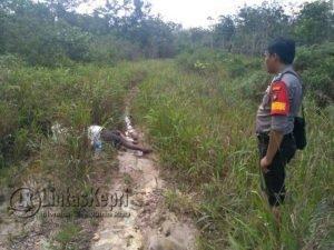 Lokasi penemuan mayat laki-laki yang telah membusuk.