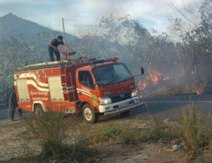 Petugas Damkar saat berusaha memadamkan api.