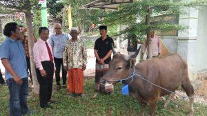 Ketua DPRD Kepri Jumaga Nadeak, menyerahkan bantuan hewankurbankepada pengurus Masjid Nurul Iman, Kelurahan, Tembesi, Minggu (19/8/2018).