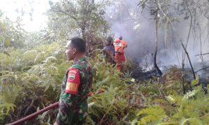 Tampak salah seorang Anggota Babinsa sedang bersiaga di lokasi terjadinya kebakaran hutan.