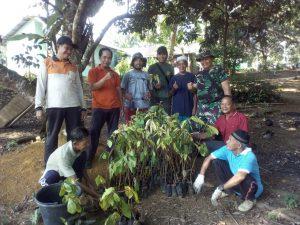 TNI bersama masyarakat tampak sedang mengambil bibit pohon yang akan mereka tanam.