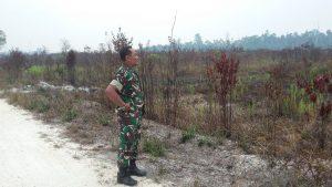 Babinsa Binjai, Serda A. Tanjung saat memantau Karhutla diwilayah binaanya.
