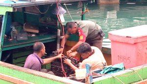 Babinsa Kelurahan Sedanau, Kopda Zulkarnaini tampak saat membantu warga binaannya memperbaiki mesin pompong.