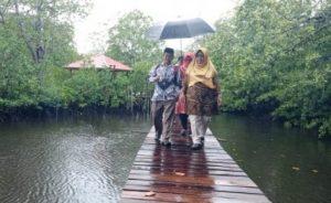 Meski dibawah rintik hujan, Wabup Ngesti tetap ingin menyusuri keindahan alam di sekitar wisata hutan mangrove.