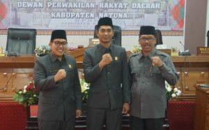 Dari kiri, Daeng Ganda Rahmatullah, Andes Putra dan Jarmin Sidik, para pimpinan DPRD Natuna definitif periode 2019-2024.