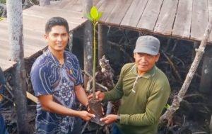 Andes Putra saat menerima bibit mangrove, yang akan ia tanam disekitar wisata alam hutan mangrove di Desa Mekar Jaya.
