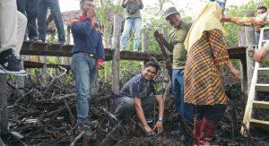Ketua DPRD Natuna Andes Putra, tampak sedang menanam bibit mangrove.