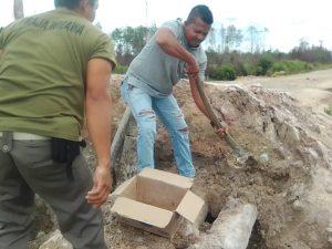 Tampak Ketua PK KNPI Bunguran Utara, Sudarso, bersama relawan lainnya saat goro membenahi jembatan sungai Semala yang ambruk.