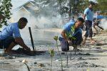 Jaga Kelestarian Lingkungan, Lanud RSA Natuna Tanam Mangrove