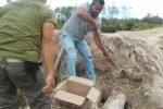 PK KNPI Bunguran Utara Ikut Goro Bangun Jembatan Ambruk di Kelarik